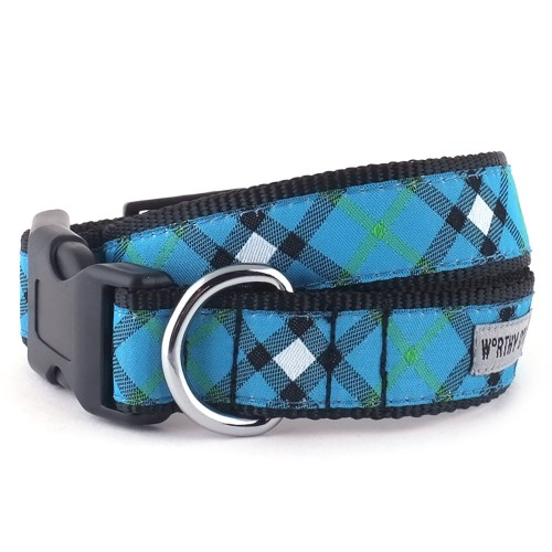 Bias Plaid Blue Collar & Lead Collection