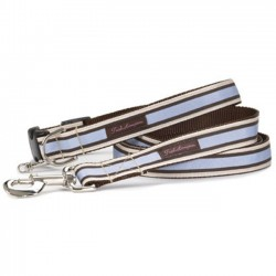 Chocolate/Periwinkle Stripe Collar Collection