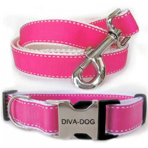 Preppy in Pink Collar & Leash Sets - Plastic/Metal Buckles